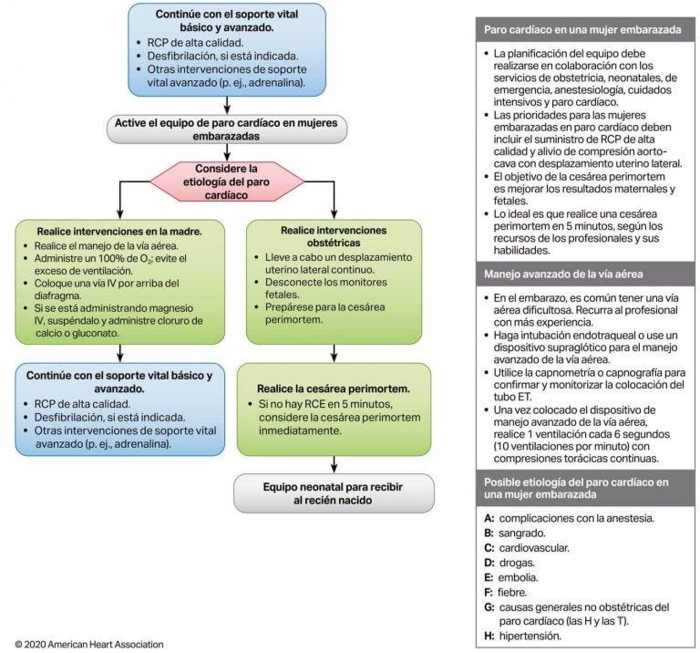 Algoritmo Soporte Vital Avanzado intrahospitalario para el paro cardíaco en el embarazo. Guías AHA 2020