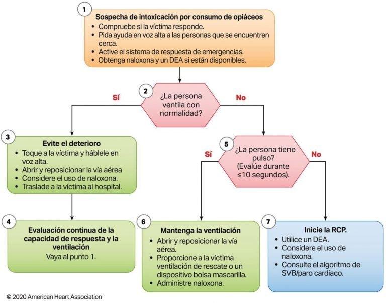 Algoritmo de emergencia asociada al consumo de opiáceos para profesionales de la salud