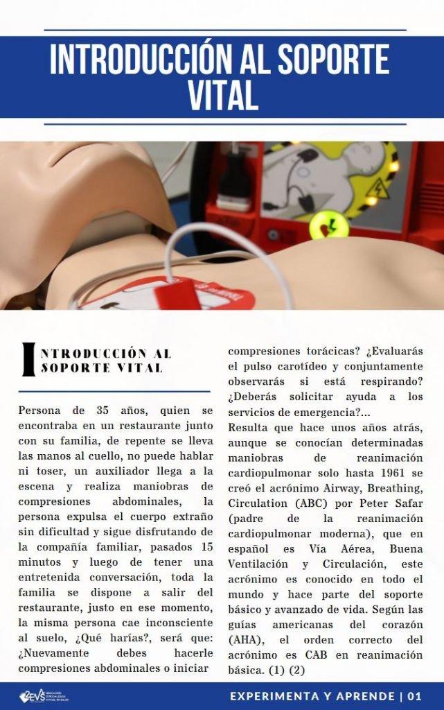 Introducción al Soporte Vital - Reanimación Cardiopulmonar RCP - eBook