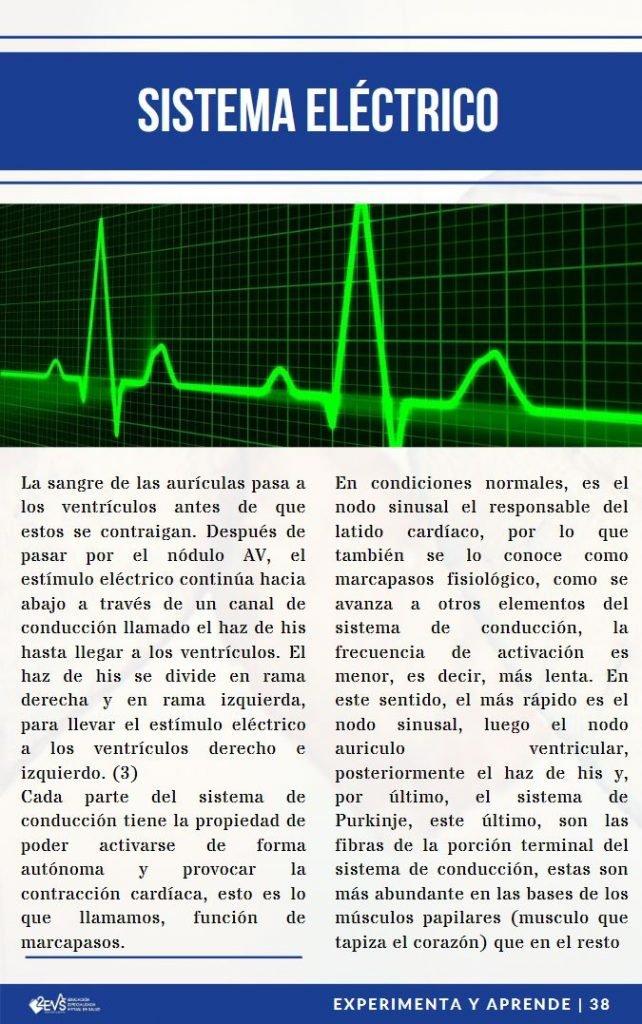 Sistema eléctrico EKG - eBook Soporte Vital Básico con Aspectos avanzados.